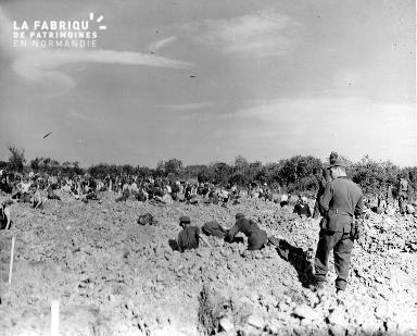 Prisonniers allemands à Collevillle-sur-Mer (secteur Omaha beach)