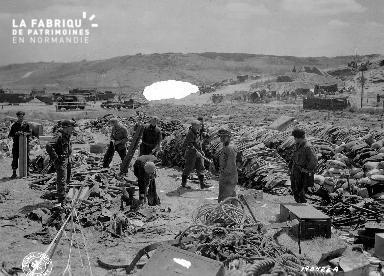 Dans le secteur d'Omaha Beach, logistique après le Débarquement du 6 juin 1944.