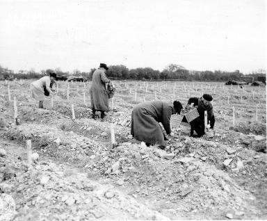Recueillement de civils dans un cimetière provisoire