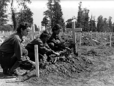 Recueillement au cimetière de La Cambe