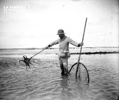 La pêche à pied 4