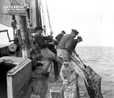 La pêche aux huitres