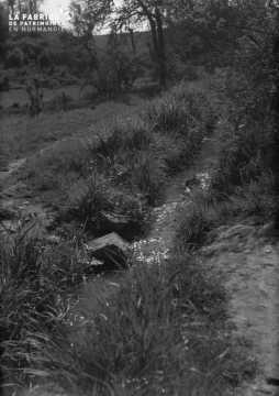 Ruisseau dans l'herbe, fromagerie
