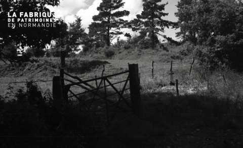 Barrière de champ
