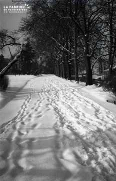 Route enneigée