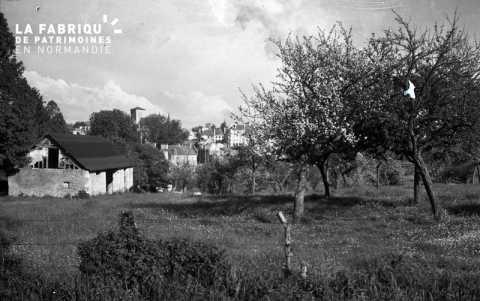 Campagne proche de Falaise