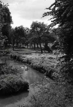 Rivière aux canards