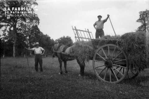 Tâche agricole