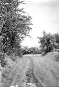 Paysage sous la neige, vision d'hiver