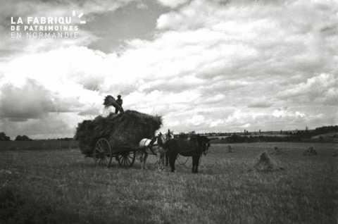 Charrette, tâche agricole
