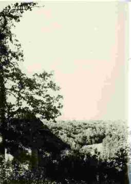 prairie de Louvigny