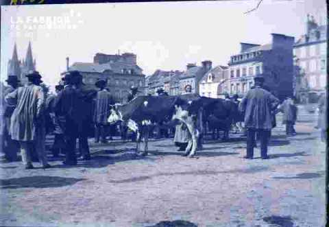 Foire  à bestiaux -Place Saint Martin