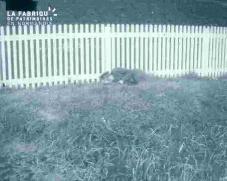 dormeur(euse) devant une barrière