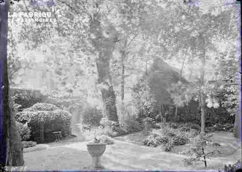 Parc arboré ou Jardin
