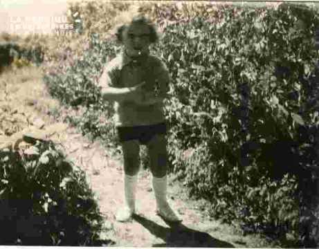 Alain  dans le jardin  (juillet)