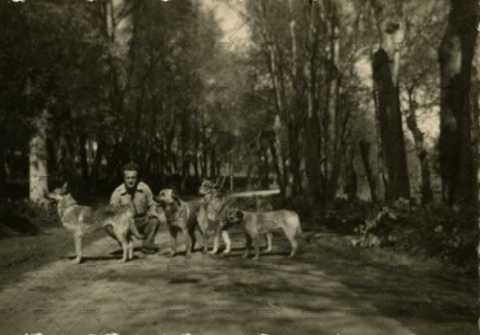 Soldats français et leurs chiens