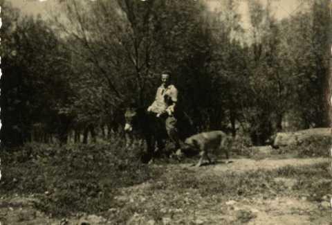 Soldat au dos d'âne