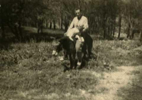 Soldat à dos d'âne