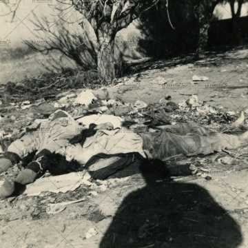 Cadavres