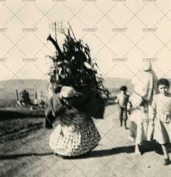 Femme portant des marchandises sur le dos