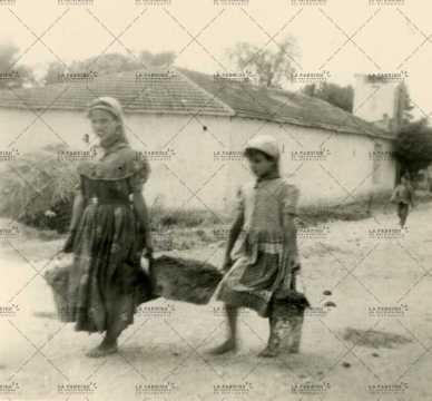 Jeunes algériens portant des seaux