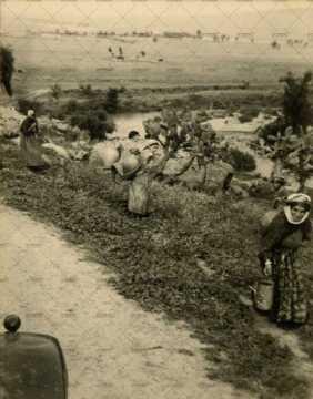 Femmes portant des jarres et timbales au milieu des cactus