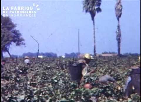 Film de famille entre 1960 et 1965