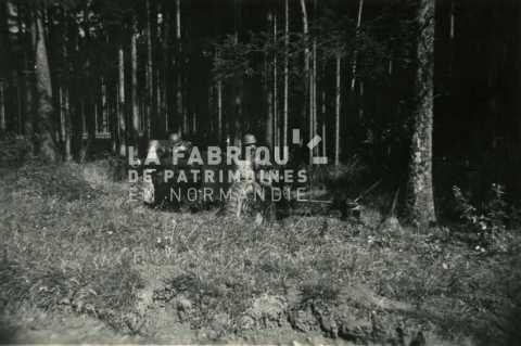Soldats français en position dans un bois avec un canon de 105 mm