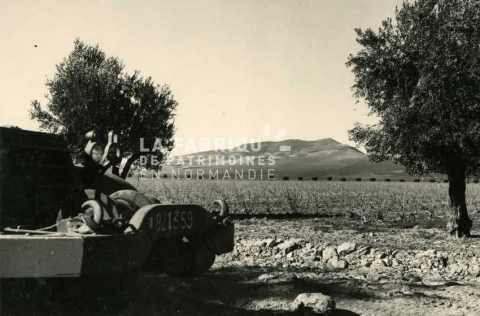 Half-track m3 près d'une base militaire française en Algérie