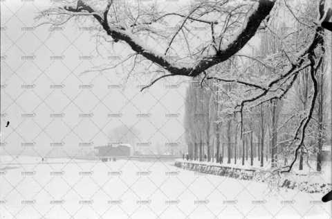 La Prairie sous la neige