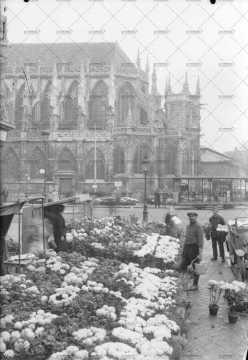 Caen, le marché aux fleurs