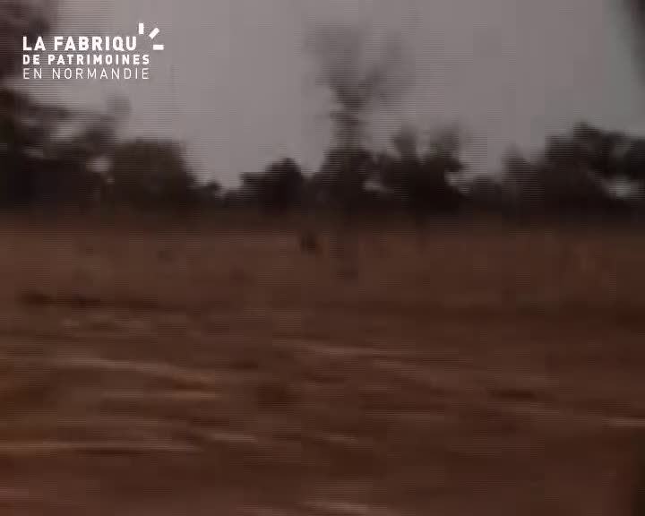 1962, chasse en Afrique