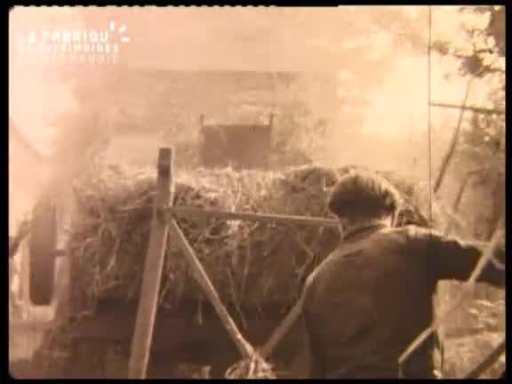 Tâches agricoles à la Bellière