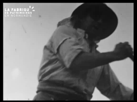 Bocage normand dans les années cinquante (Le)